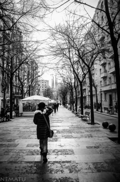Avinguda de Gaudí