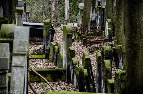 Cementerio judío.
