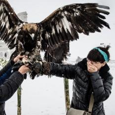 Mongolia-66