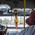 Autobuses...