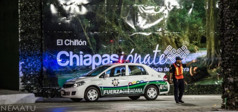 Chiapas-236 [low]