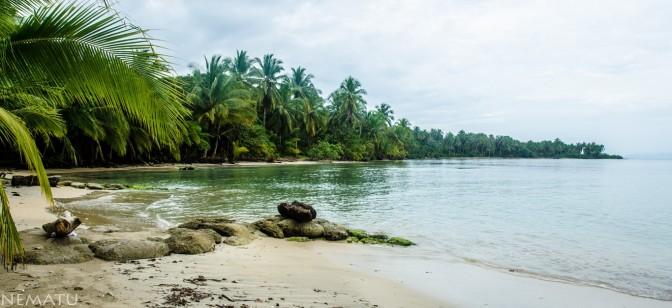 SURFEANDO PANAMÁ (Primera Ola)
